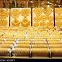 توضیحات محمد کشتی آرای در مورد علل رشد قیمت سکه و طلا