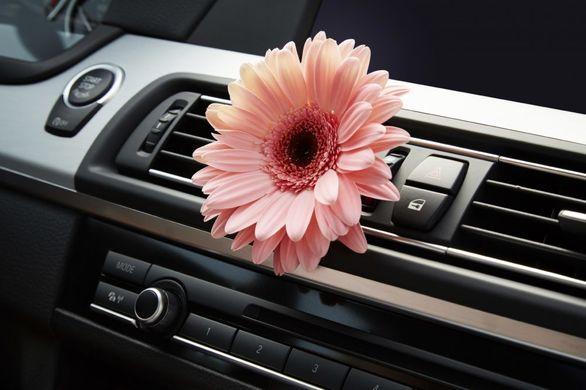چرا از بوی خودروی نو خوشمان می آید؟