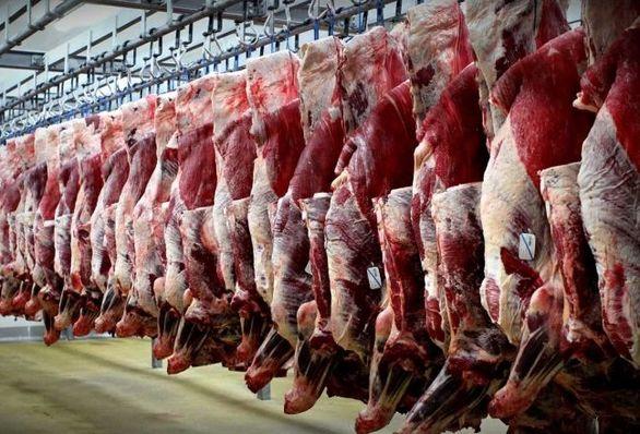 عامل نابسامانی بازار گوشت قرمز چیست؟