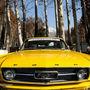رالی خودروهای کلاسیک در تهران و کرج
